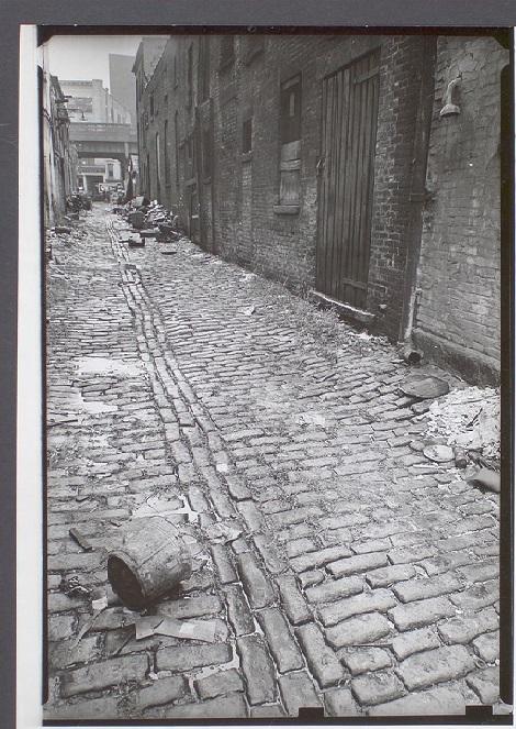My Alley.jpg